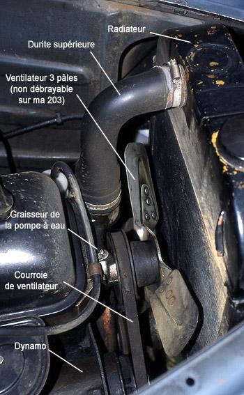 Tuyau De Radiateur Eau De Refroidissement de Tuyau d/'eau du robinet tuyau